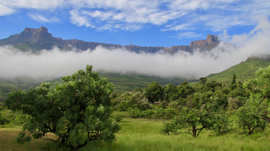 Mist rise up the wall of the Amphitheatre in the Drakensberg Mountains