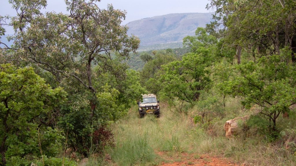 Game drive vehicle in the African Bush