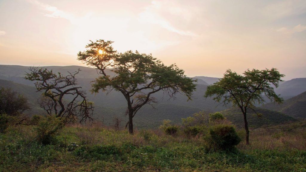 Perfect mountain sunset at Black Leopard Mountain Lodge