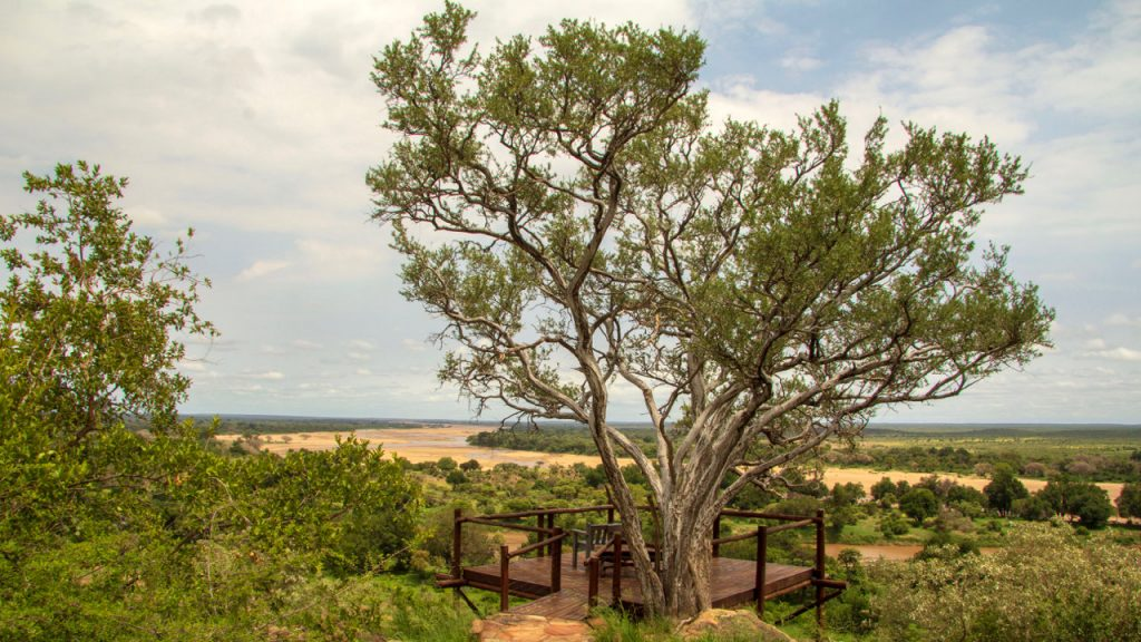 Confluence Viewing deck over the Limpopo River in Mapungubwe National Park