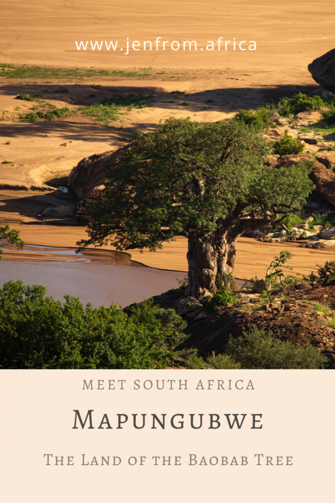 Mapungubwe Land of the baobab tree Pin1