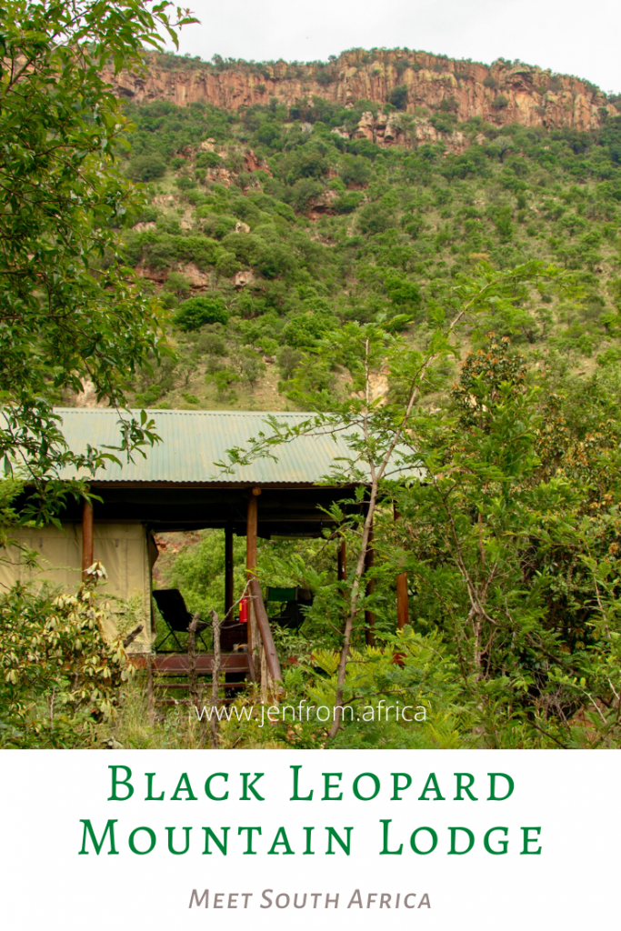 Black Leopard Mountain Lodge Pin2