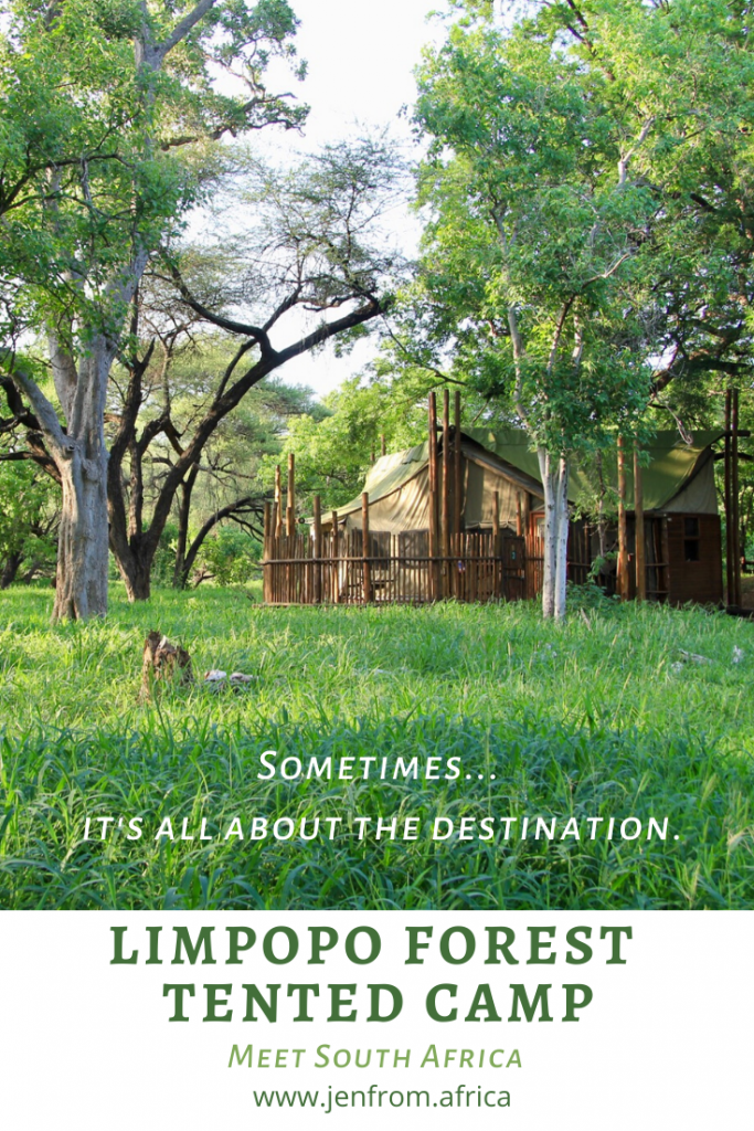 Limpopo Forest Tented Camp Pinterest