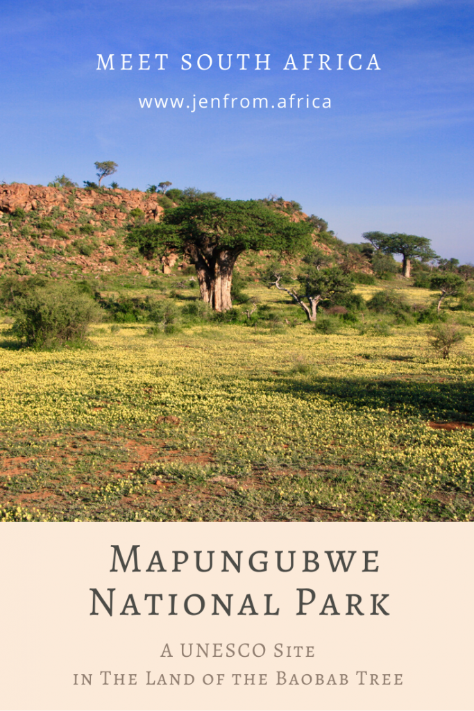 Mapungubwe Land of the baobab tree Pin3