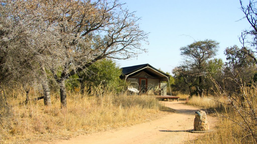 A luxury safari-style tent deep in the African bush.