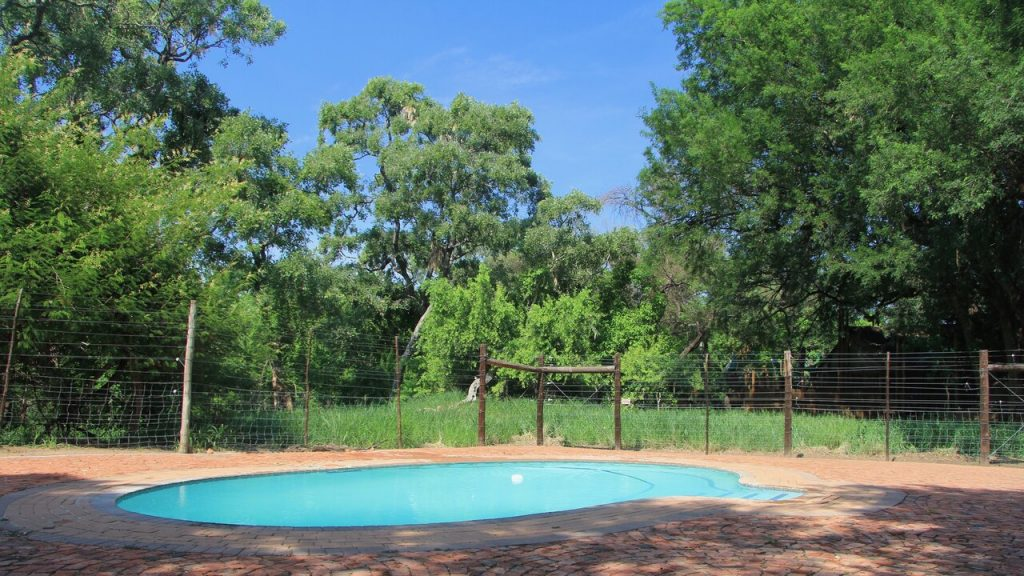 The swimming pool at Limpopo Forest Tented Camp